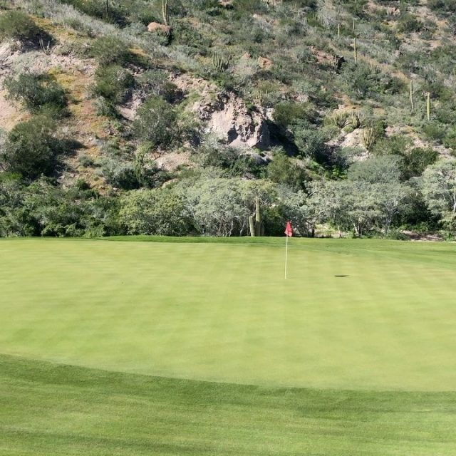 We're excited to reopen our course on June 1! Don't miss the Return to Golf package - link in bio 🏌️‍♀️ . . . . . . . #golf #golfcourse #golfer #golftravel #golfswing #golftips #golfcourses #golftrip #golfvacation #golflife #instagolf #golfislife #golfisfun #buddiestrip #golftravel #livingthegreen #playmoregolf #whyilovethisgame #golfholeswithviews #beautifulgolfcourses #golferslife #golfersofinstagram #golfers #golflovers #golftrip #titleist #golfdigest #topgolf